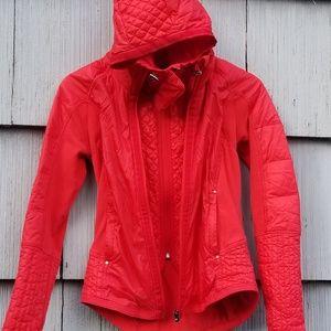 Dashing Reebok Hot Pink Womens Wind Breaker With Navy Blue Detail Size Medium Nwot Activewear Jackets